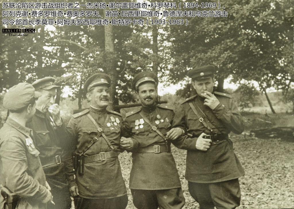 乌克兰游击队指挥官17