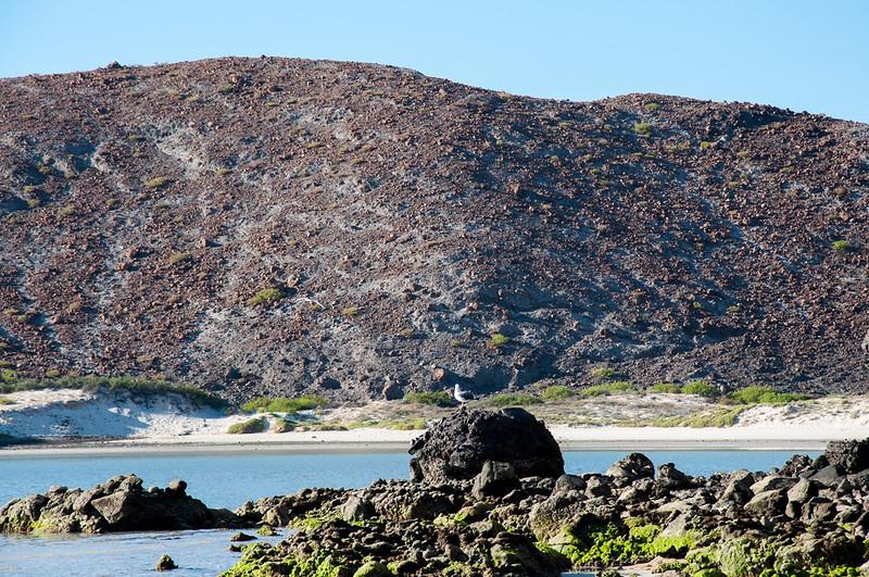desierto-rocas-playa-balandra