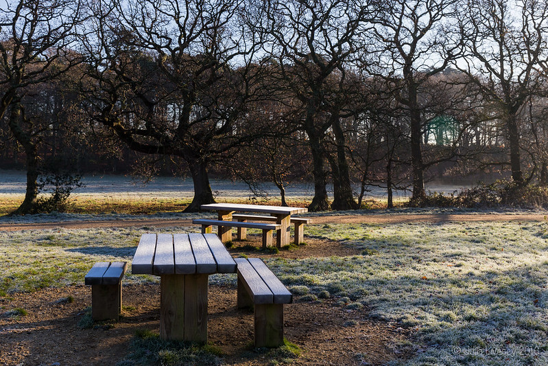 Frosty picnic tables