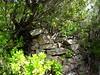 Ruines de la bergerie de Strascinedda