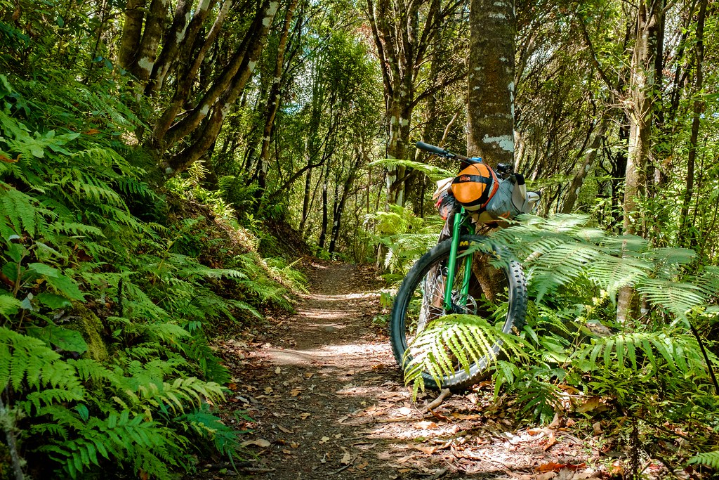 170113_Rotorua to Nat Park -34