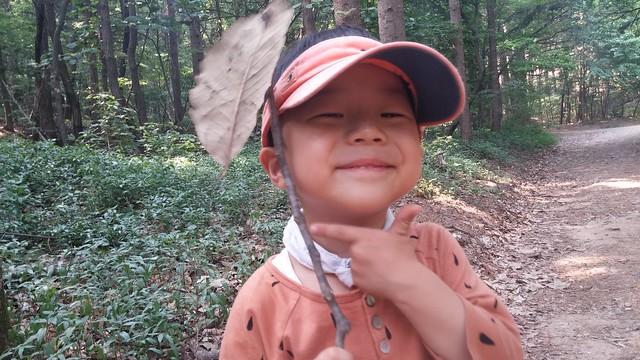 소령원 숲속   숲놀이터