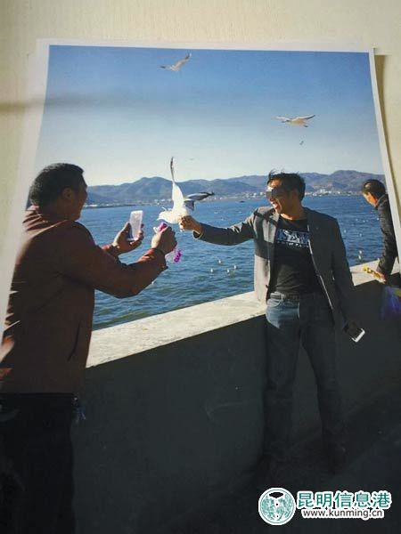A tourist in Kunming's haigeng dam to catch seagulls pictures, was broken after being stopped by security Gull wings