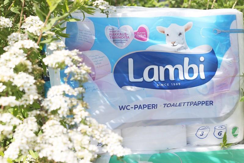 Lambi_2