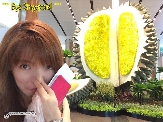 Changi Airport Durian