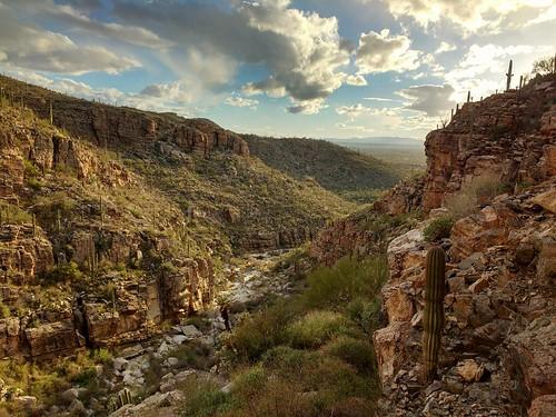 La Milagrosa Canyon, near Mt. Lemmon, AZ