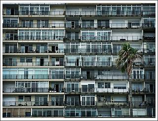 Palm Tree Yard Decor
