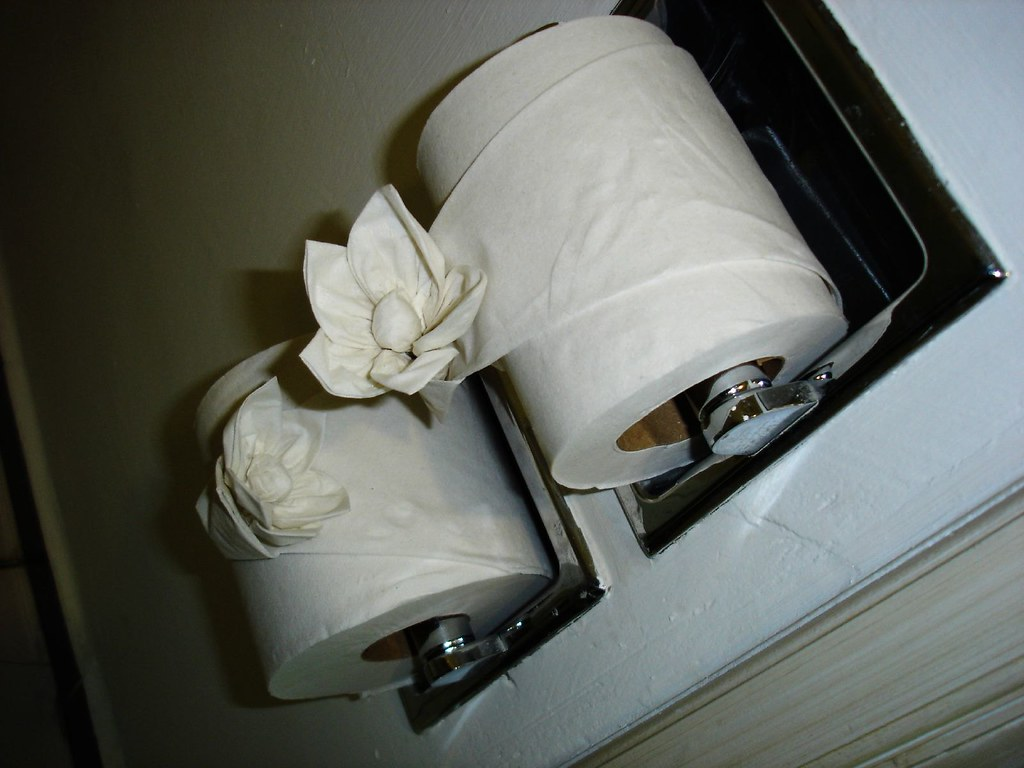 Toilet Paper Flowers We Stayed At The El Cid Marina In Maz Flickr