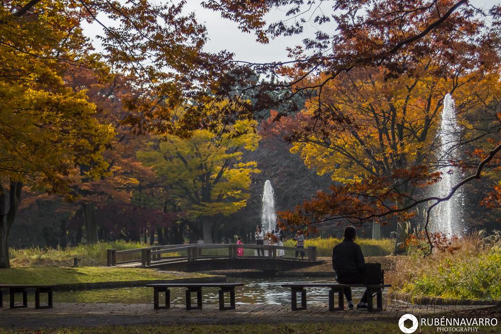 Qué ver en Tokio en 6 días