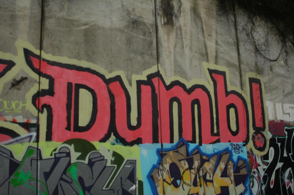 Stay Dumb (Dumb)