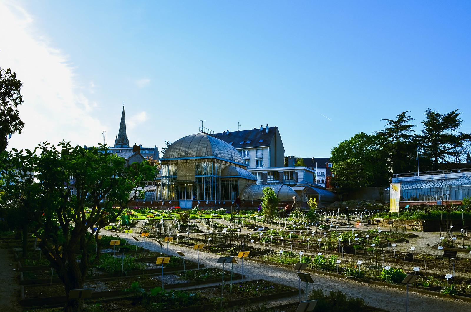 Escapade au Jardin des Plantes de Nantes