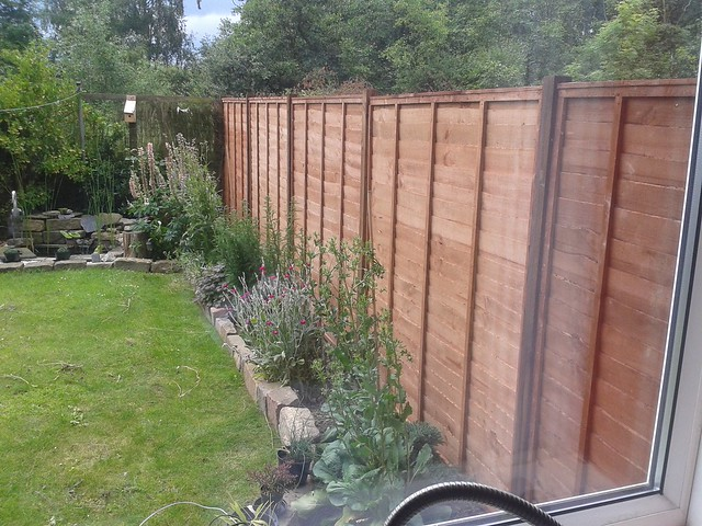 The new fence put up by my neighbour