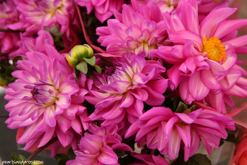farmers_dahlias_web