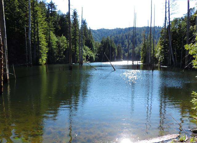 Mount Tamalpais State Park, California, USA