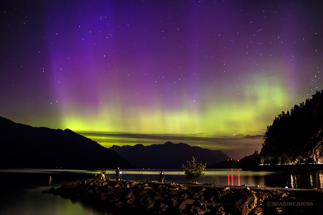 Dancing in the Dark ~ Porteau Cove, BC
