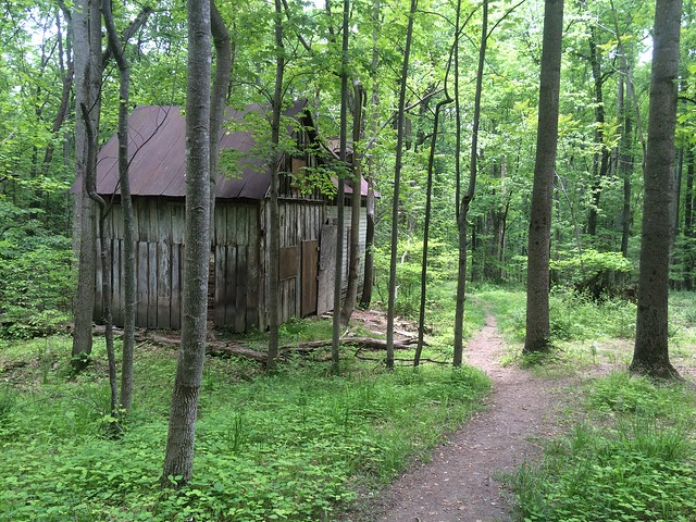 Camping a random journey for Susquehanna state park cabins