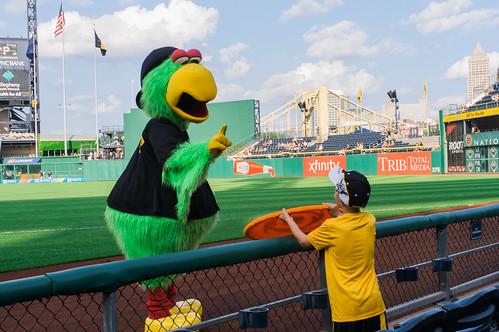 Parrot frisbee.