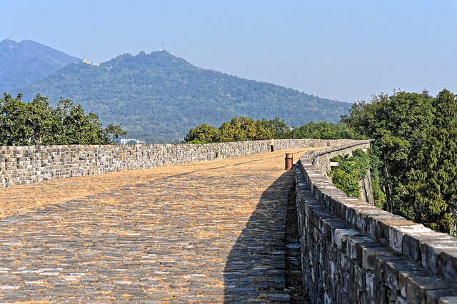 on the Nanjing Wall (594)