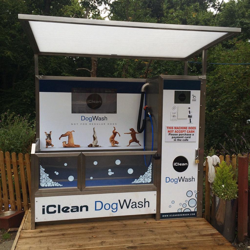 Free Dog Wash Gold Coast