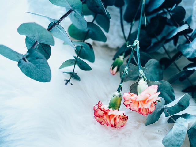 P2042315.jpgFlowersPlantsEucalyptusCarnationFlower,FlowersEukalyptusNeilikka-2042314.jpg,kukkakimppu, bouquet, kukat, flowers, leikkokukat, lehtivihreä, eucalyptus, popular, suosittu, muoti, fashion, oksat, branches, carnations, oranssi neilikka, orange carnations, inspiration, inspiraatio, kukka-asetelma, arrangement,