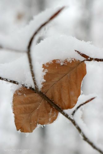 White January