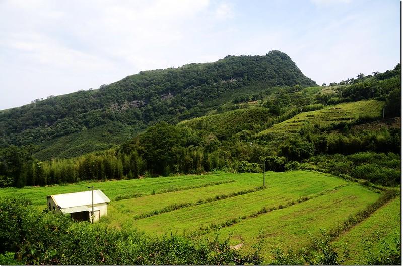 南清聯絡道路眺望鷂婆山