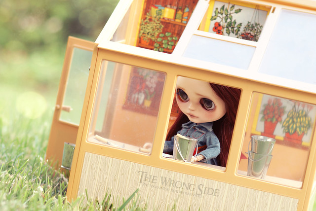 ADAW 28/52 If you have a garden and a library, you have everything you need (Marcus Tullius Cicero)