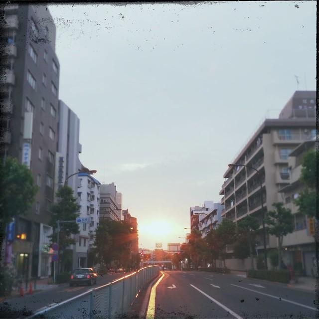 Mejiro avenue