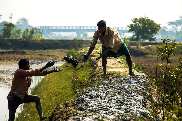 Farmers preparing pond dikes in Khulna, Bangladesh. Photo by AWM Anisuzzaman.