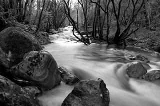 {Long Exposure Stream}FCC137 | by framcameraclub