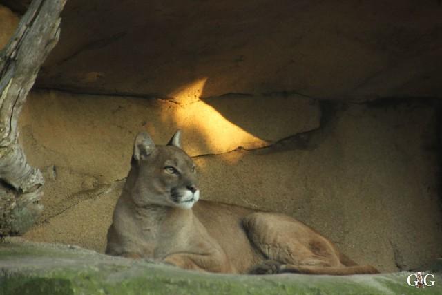 Besuch Zoo am Meer 29.12.201654