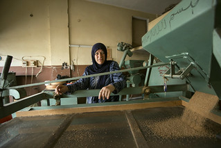 Lebanon - women entrepreneurs, workers and small business owners | by UN Women Gallery