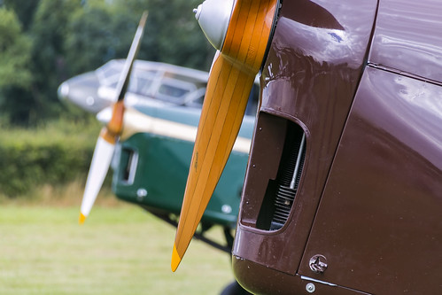 DH-82 Tiger Moths | by Sam Wise