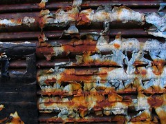 rust / paper | by Waltergr