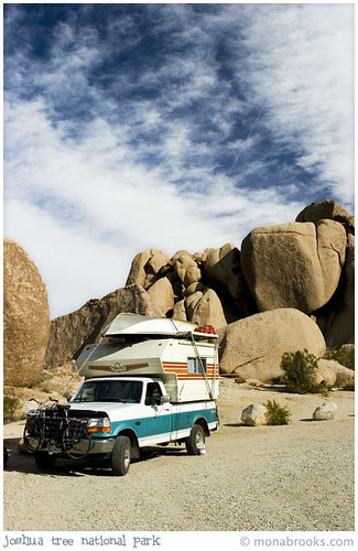 joshuatree_1301 | by SFMONA