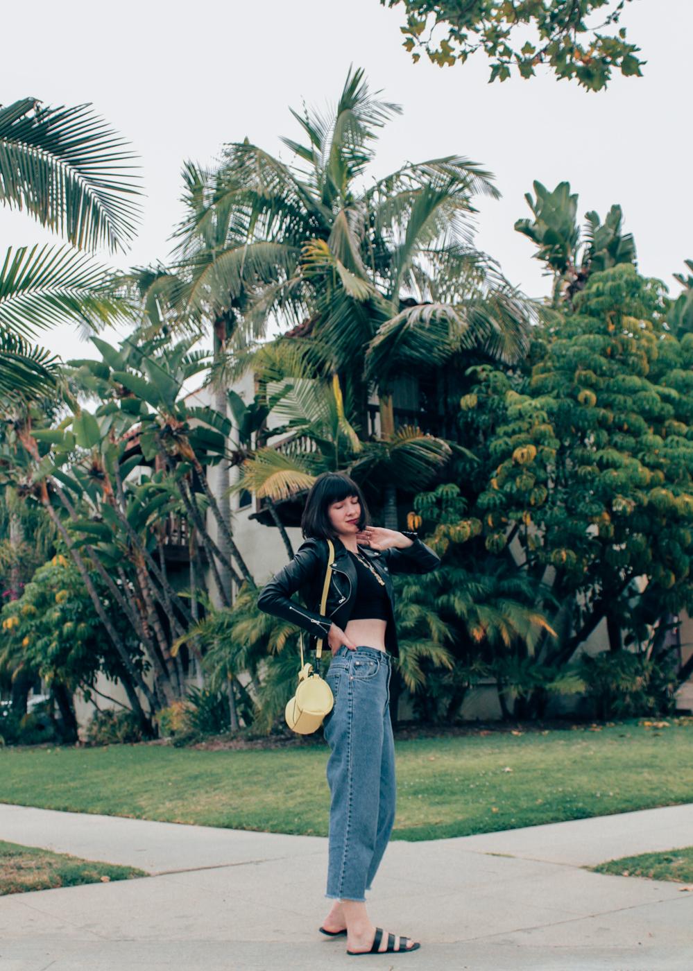 palmtrees-6