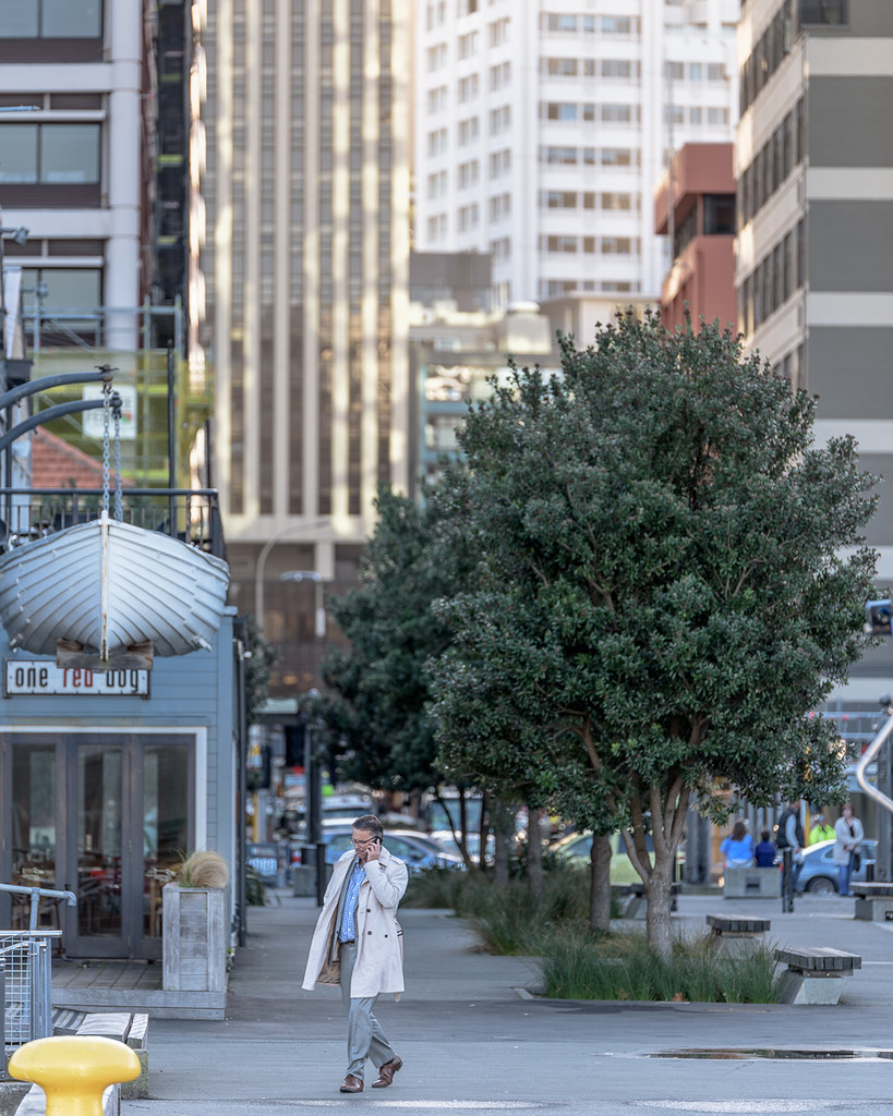 new zealand city life - photo #11