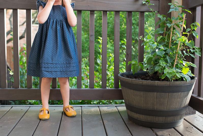 geranium dress - with growth pleats