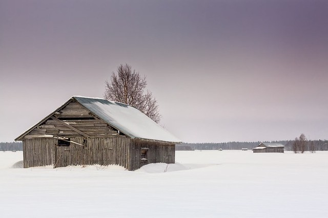 Barn Houses After The Snow Storm