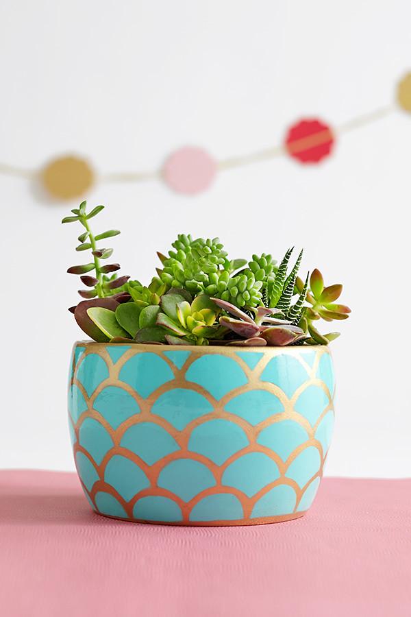 Indoor Winter Plants Our 8 Best Houseplants To Grow Now Ugr