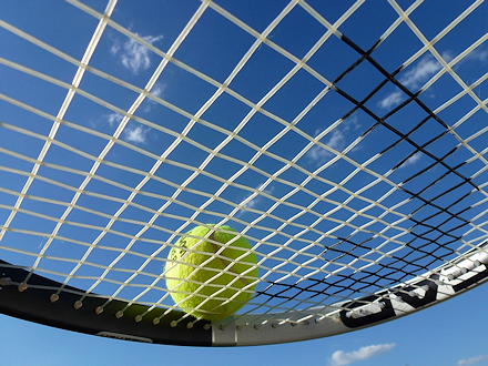 A tennis ball resting on a tennis racquet.