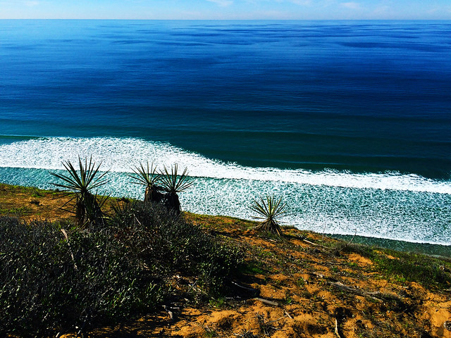Torrey Pines State Natural Reserve, California, USA
