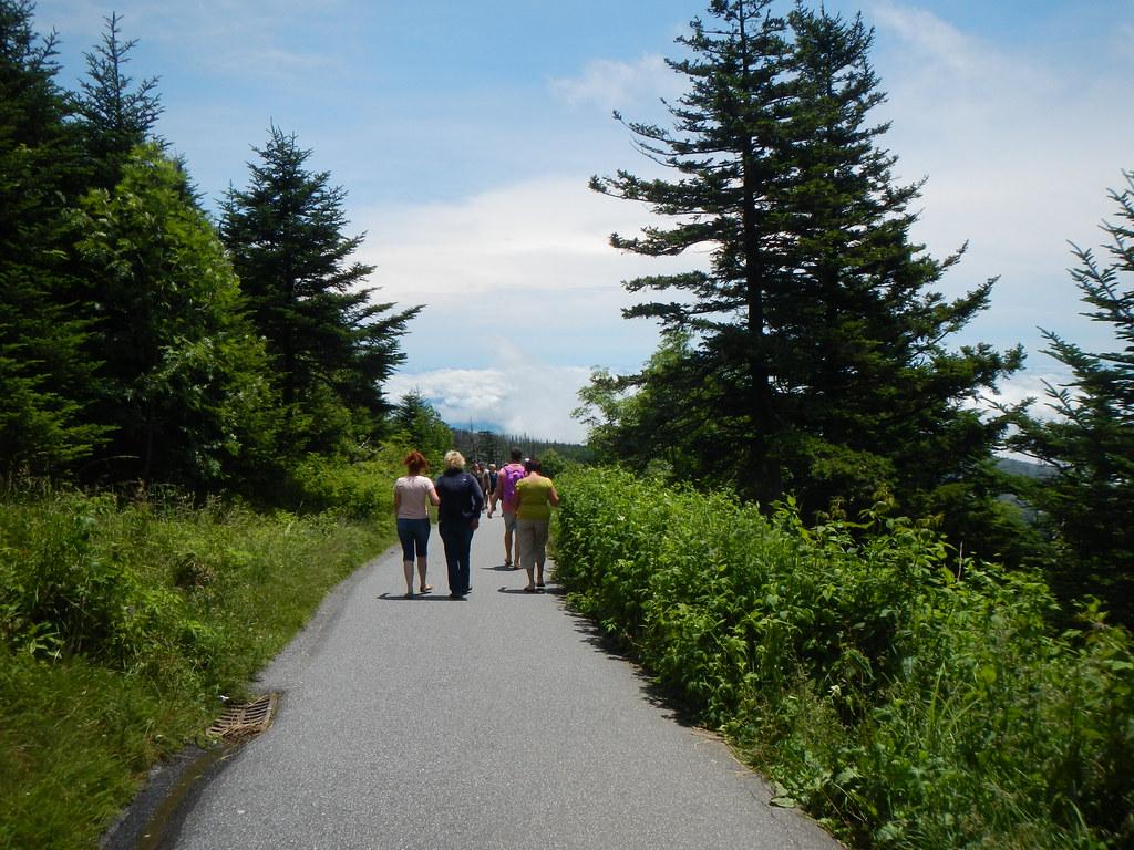 Clingmans Dome Trail | Clingmans Dome Trail | Steve | Flickr