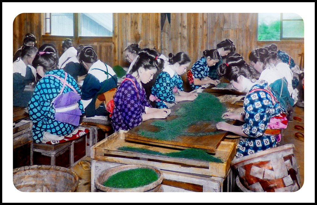 1920s HAIRSTYLES of the JAPANESE TEA SORTERS | An un ...