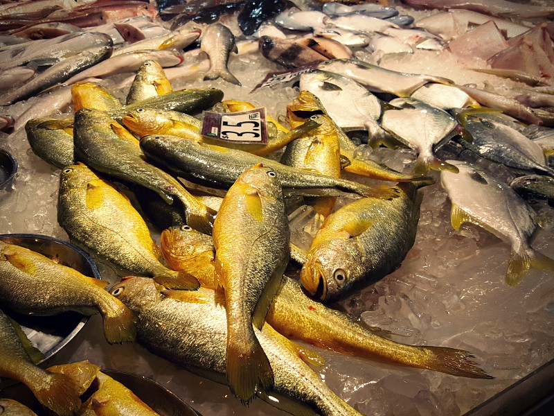 Hong Kong fish market