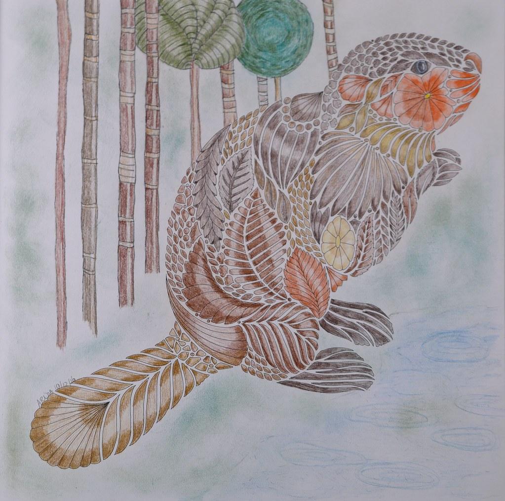 Millie Marotta Beaver