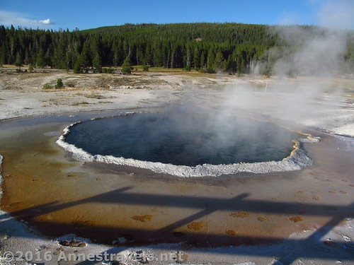 Crested Pool, near Castle Geyser in the Upper Geyser Basin of Yellowstone National Park, Wyoming