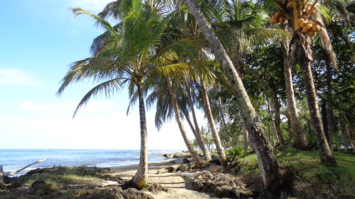 Playa Chiquita en Puerto Viejo