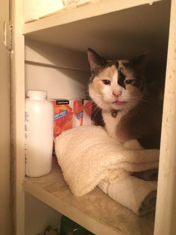 Tinny cupboard