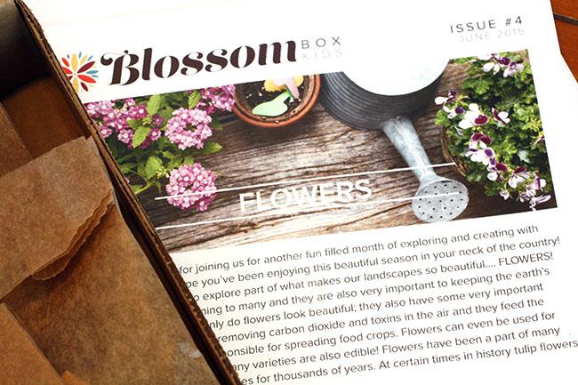 FlowerBox_Newsletter